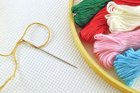 Needle and colored  thread for cross stitching on canvas photo