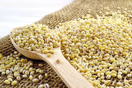 sacking: Photo wooden spoon with pearl barley on sacking