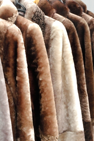 Coats made of natural fur for sale