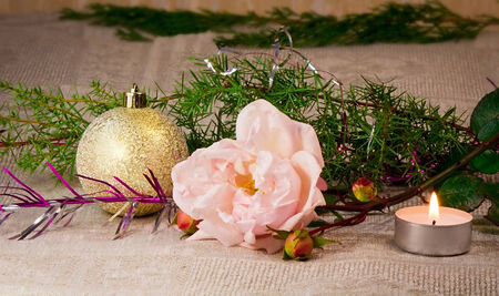 Beautiful shiny white ball , a candle, a rose, and the branches of a Christmas tree ornament. photo