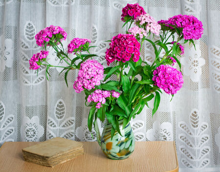 the next life: Still life: a beautiful bright pink and red flowers carnations in a glass vase on the table next to the old book.