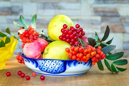 mountain cranberry: Still life: on the table are books and fruits, berries and Rowan in a beautiful ceramic vase. Stock Photo