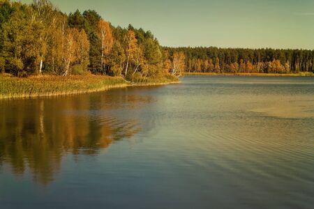 tree  oak: En la orilla de un gran lago con los �rboles con hojas amarillas. Las copas de los �rboles reflejan en el agua. Foto de archivo