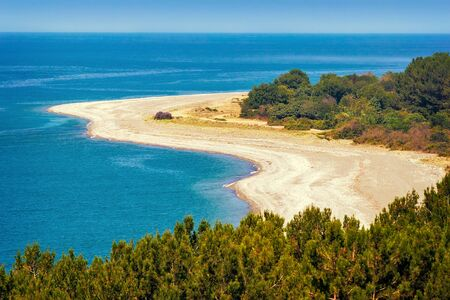 ocean view: Beautiful landscape: blue sea, beach, shore with growing pine trees. The view from the top.