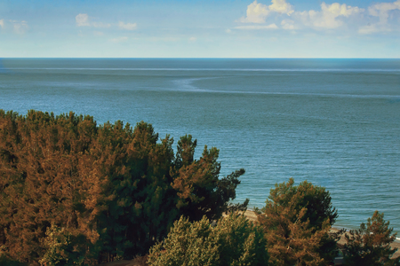 pine trees: Beautiful landscape: blue sea, sky, beach, shore with pine trees growing , hull hotels Stock Photo