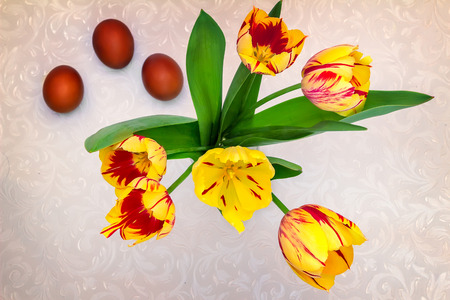 tulip: Beautiful yellow and red tulips , and near them three red Easter eggs. The view from the top. Zdjęcie Seryjne