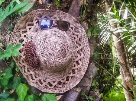 tinted glasses: In the Park on the trunk of a palm tree hangs a large female hat for sun protection and tinted glasses. Stock Photo