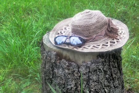 tinted glasses: On the lawn of green grass on the stump of a felled tree lying a womans hat and tinted glasses. Stock Photo