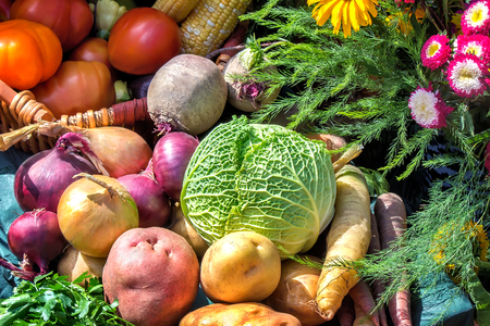 free image: A variety of vegetables: tomatoes, potatoes, carrots, cabbage, parsley, onions, beets, corn, submitted for sale at the fair.
