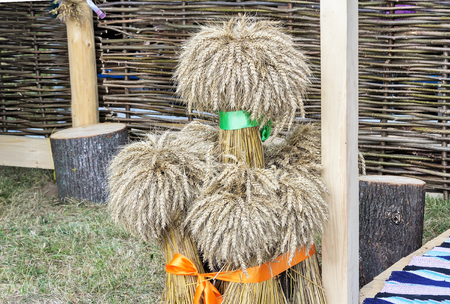 embellished: Several large sheaves of wheat are presented near braided fence as part of the decorations for the harvest festival.