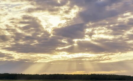 In the sky through the dark clouds make their way the rays of the rising sun over the forest.