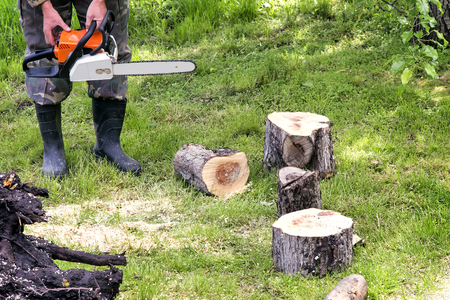 chainsaw: A man with a chainsaw sawing a tree trunk into smaller sections.