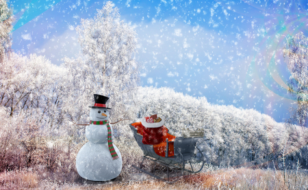 a christmas story near snow covered trees stood a snowman with a hat and
