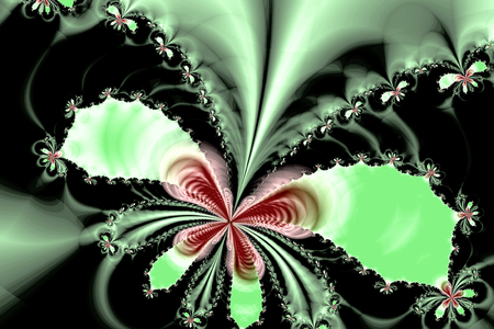 Fractal image: Flight of butterflies