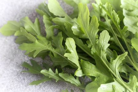Green fresh arugula leaves on the table. Presented in close-up, black and white image