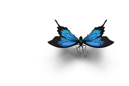 On a white background is a blue butterfly Morpho . 3D rendering.