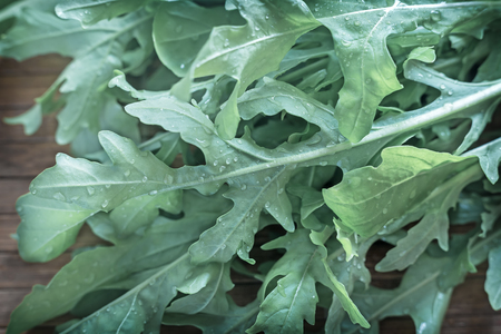 Green fresh arugula leaves on the table. Presented in close-up. Stock fotó - 109468025