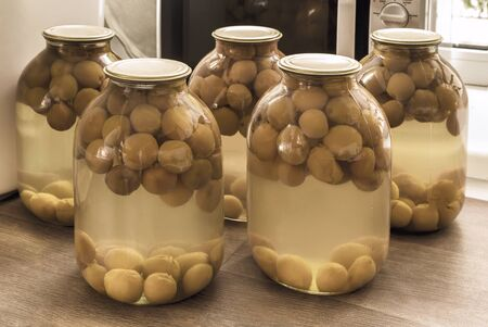 Home preservation of products: glass jars with compote of ripe apricots, hermetically sealed 스톡 콘텐츠