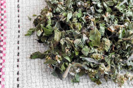 Motherwort - a medicinal plant with a calming effect Zdjęcie Seryjne - 130146600