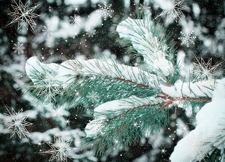 Beautiful Christmas card in vintage style with a picture of a Christmas tree, strewn with snow