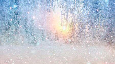 Background for Christmas greeting card with a picture of winter landscape. 스톡 콘텐츠