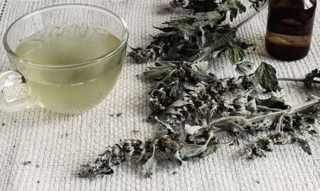 Valuable medicinal plant-motherwort with dry flowers and leaves. Next, tincture of motherwort in a dark bottle and in a Cup Reklamní fotografie