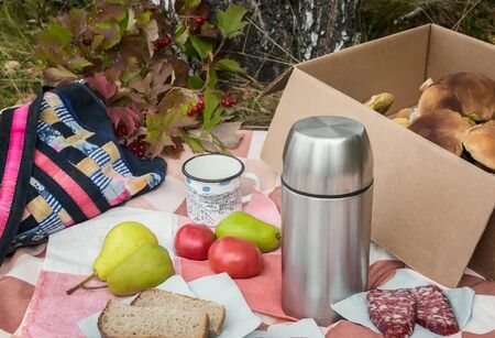 In the woods in a clearing on the tablecloth lies Breakfast: sausage, bread, coffee, fruit. Next in the box of harvested mushrooms.