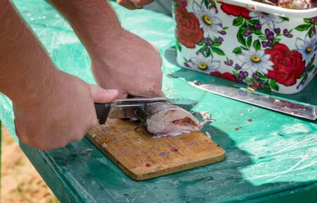 On the table on the kitchen Board a man cuts into pieces peeled fish for cooking soup Foto de archivo - 134654690