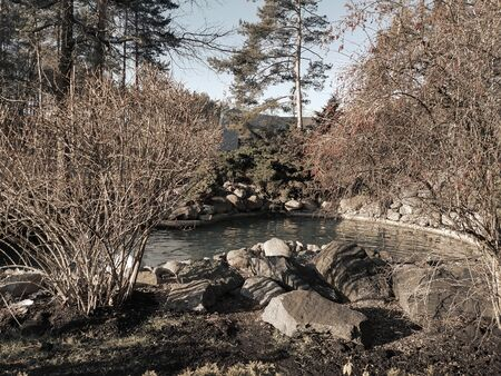 Landscape design: a small artificial pond in the Park with granite stones on the shore and beautiful ornamental plants on a Sunny autumn day.