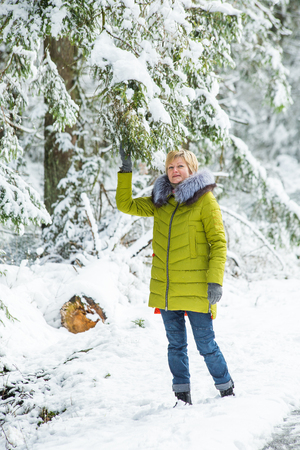 A young woman is walking through the winter forest between the snow-covered trees