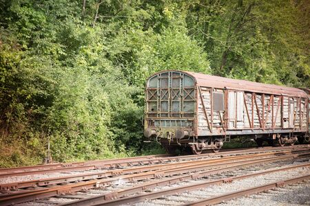 Various rusted wagons and train on the tracks at the lost railway station Stock fotó