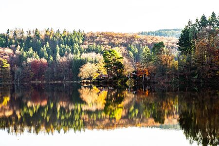 reflection on the surface of the lake in the Eifel Nature Park