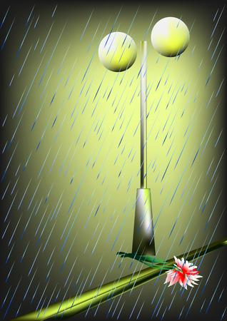 lies: Rain,light,lies on the asphalt flower