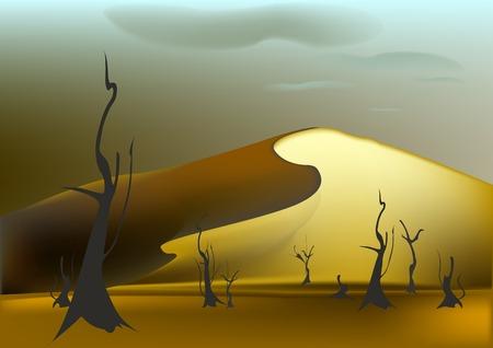sand dune: Sand dune, bare trees, the evening in the desert