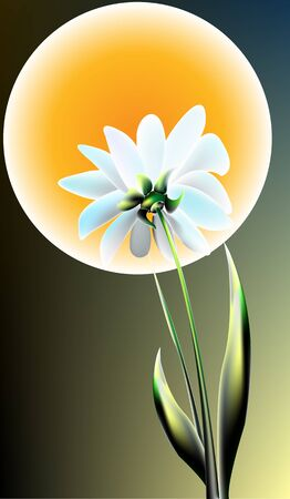 moon flower: White flower on a background of the moon and the night sky