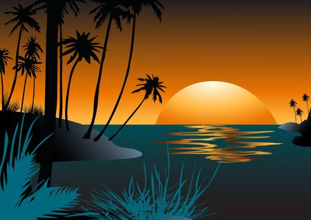 beach sunset: Hawaiian beach with palm trees at sunset Illustration