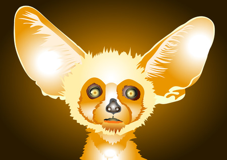 fluffy: dwarf Fox with large ears, bright little fluffy Illustration