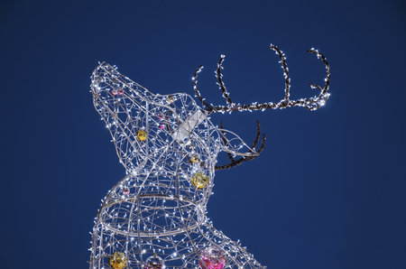 The electric Christmas reindeer