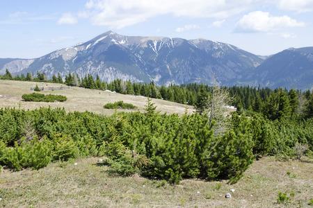 h�tte schnee: Die Rax Alpen-Berge mit Schneeberg �sterreich