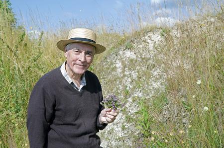 thymus: Senior collecting herbs, thyme, Thymus vulgaris