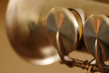 soprano saxophone: Saxof�n soprano