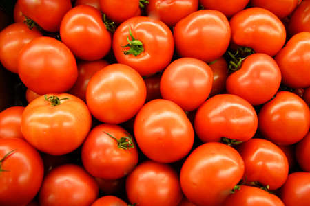 hot house: Hot House Tomatoes