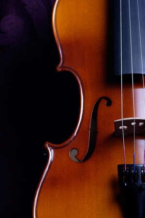 upright: close up side view of a violin standing upright