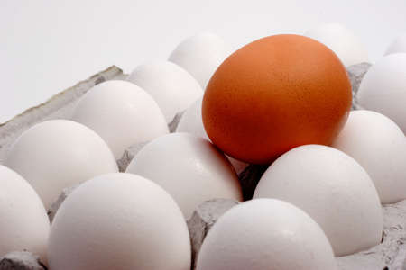 Brown egg with a carton of white eggs to show Standing out from the crowd
