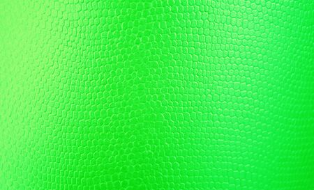 light green texture background for graphic design Reklamní fotografie - 148277009