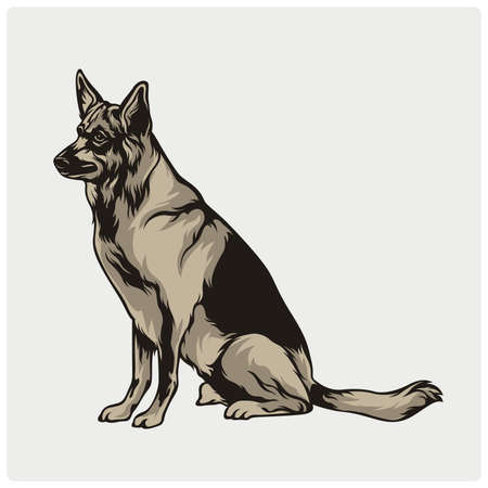Vector illustration of an dog