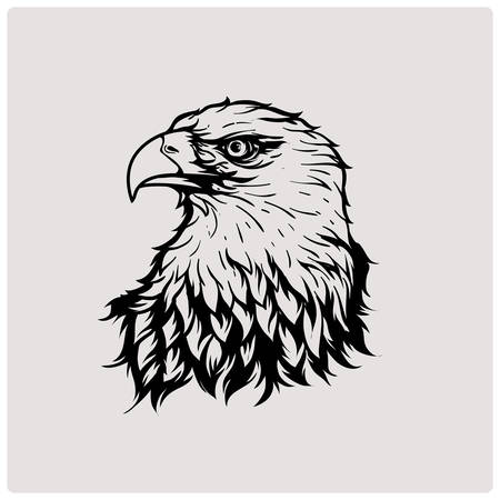Head eagle. Vector illustration. Illustration