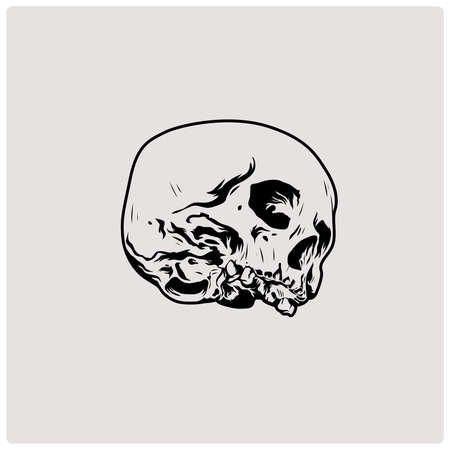 The image of the skull. Vector illustration.
