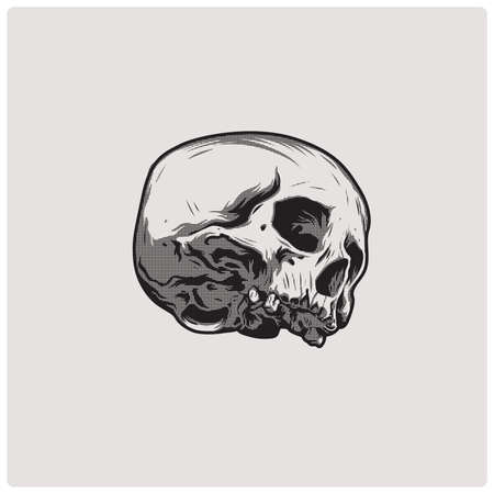 fallen: The image of the skull. Vector illustration.