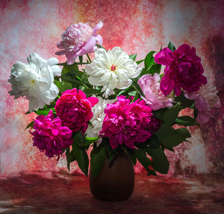 bouquet of ten bright burgundy, tender pink and white peonies